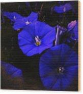 Blues Wood Print