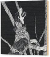 Bluetick Coonhound Wood Print