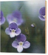 Bluettes Wood Print