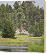 Bluff Lake Ca 13 Wood Print