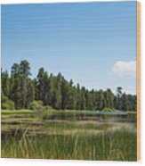Bluff Lake Ca 3 Wood Print
