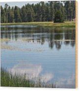 Bluff Lake Ca 4 Wood Print