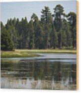 Bluff Lake Ca 6 Wood Print