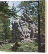 Bluff Lake Ca Boulders 1 Wood Print