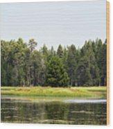 Bluff Lake Ca Island 3 Wood Print
