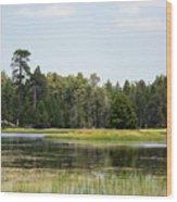 Bluff Lake Ca Island 4 Wood Print