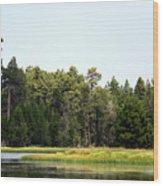 Bluff Lake Ca Island 5 Wood Print