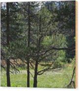 Bluff Lake Ca Through The Trees 8 Wood Print