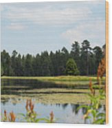 Bluff Lake Ca Wild Flowers 11 Wood Print