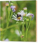 Bluff Lake Ca Wild Flowers 8 Wood Print