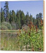 Bluff Lake Foliage 4 Wood Print