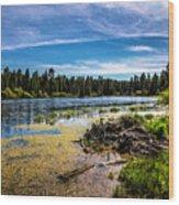 Bluff Lake  Wood Print