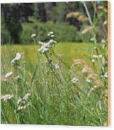 Bluff Lake Wild Flowers 1 Wood Print