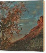 Bluffs Along The Saline River North Of Russell, Kansas. Wood Print