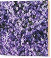 Bluish Carpet Wood Print
