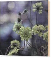 A Meadow's Blur Of Nature Wood Print