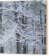 Blurred Shot Of Snow-covered Trees Wood Print