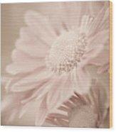 Blushing Wood Print