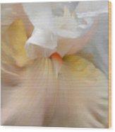 Blushing Peach Iris Flower Wood Print