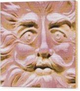 Blushing Sol Wood Print