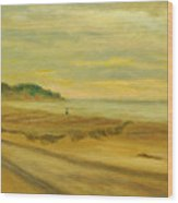 Blustery Day Zuma Beach Wood Print