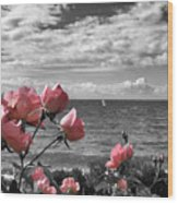 Blustery Summer's Day  Wood Print