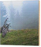 Boar Head Wood Print