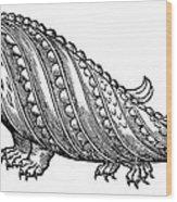 Boar Whale Wood Print