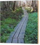 Boardwalk 2 Wood Print