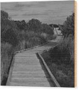 Boardwalk At Talbot Island Wood Print