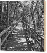 Boardwalk B Wood Print