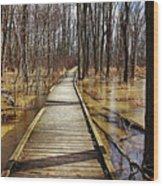 Boardwalk Over Golden Brown Iced Pond Wood Print