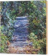Boardwalk Through The Brambles Wood Print