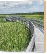 Boardwalk Through The Dunes Prince Edward Island Wood Print