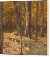 Boardwalk Through The Woods Wood Print