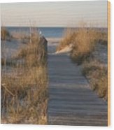 Boardwalk To The Beach Wood Print