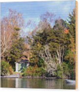 Boat Shed On The Waikato River Wood Print