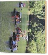 Boat Tours Tam Coc Vietnam  Wood Print