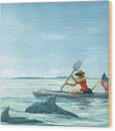 Boating Dolphin Wood Print