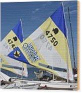 Boats 168 Wood Print
