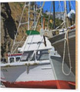 Boats In Drydock Wood Print