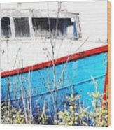 Boats In The Garden Wood Print