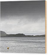Boats Moored In The Harbor Oban Wood Print