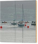 Boats On Carsington Water Wood Print