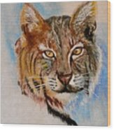 Bob Cat Wood Print by Jean Ann Curry Hess