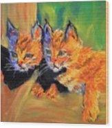 Bobcat Kittens 1 Wood Print