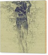Boboli Gardens #3, Florence Wood Print