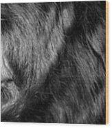 Body Of Hair Wood Print