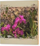 Bog Laurel Flowers Wood Print