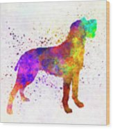 Bohemian Wirehaired Pointing Griffon In Watercolor Wood Print